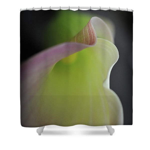 Shower Curtain featuring the photograph Isn't She Lovely by Michelle Wermuth