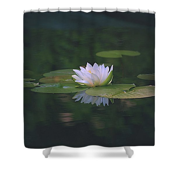 Its A Beauty Shower Curtain