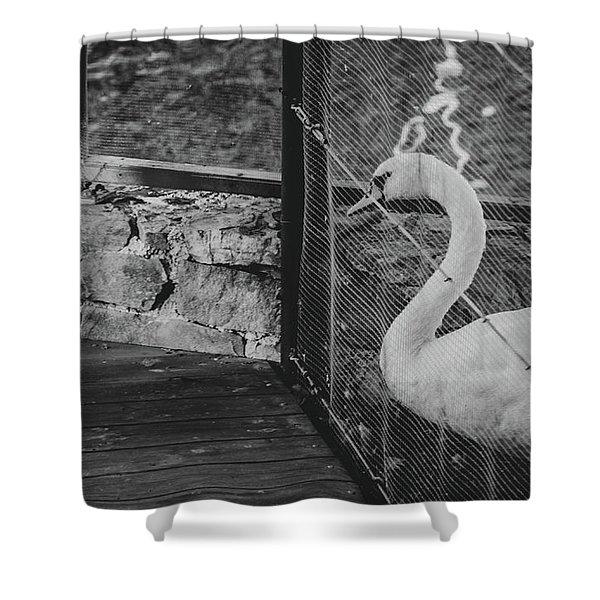 Jail Shower Curtain