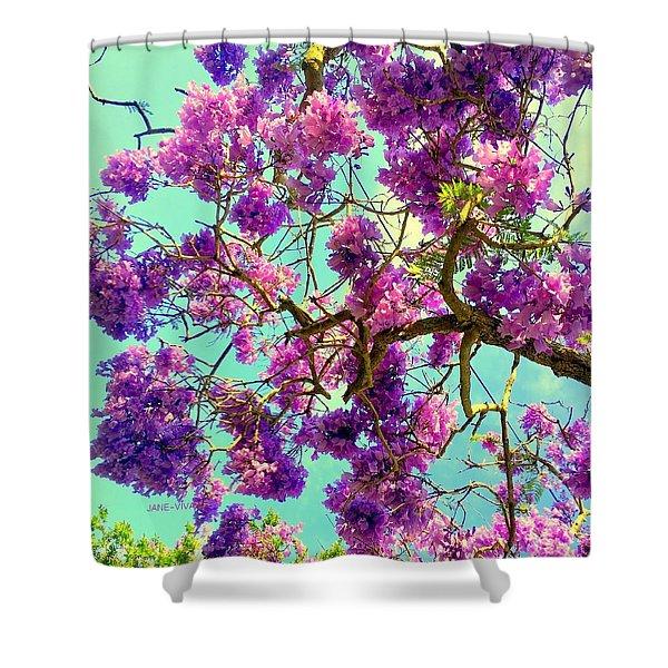 Jane's Jacaranda Tree Shower Curtain
