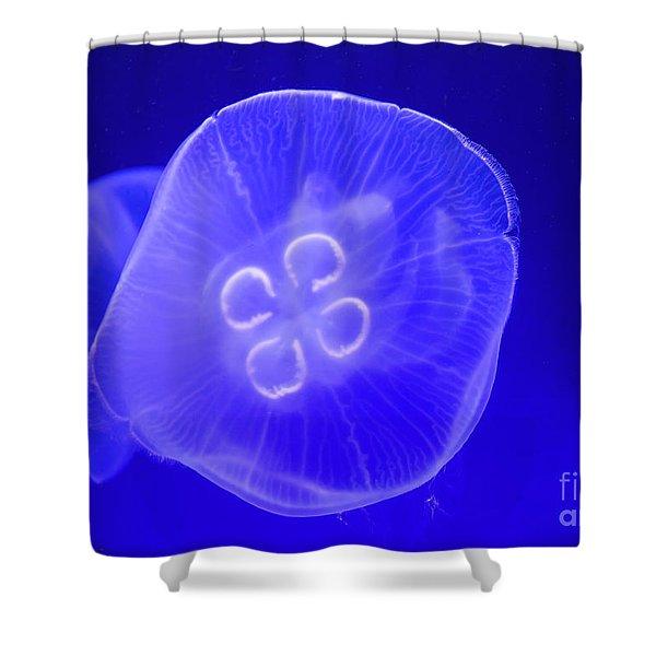 Moon Jellyfish Shower Curtain
