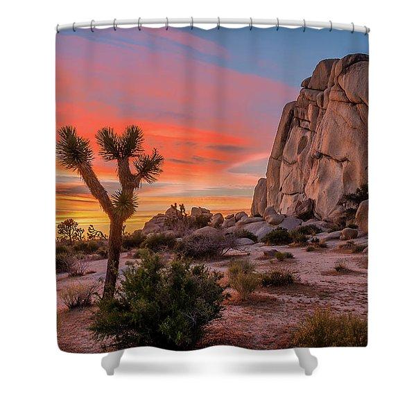 Joshua Tree Sunset Shower Curtain