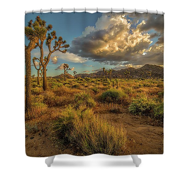 Joshua Tree - Where I Wanna Be Shower Curtain