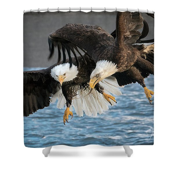 Jousting Eagles Shower Curtain