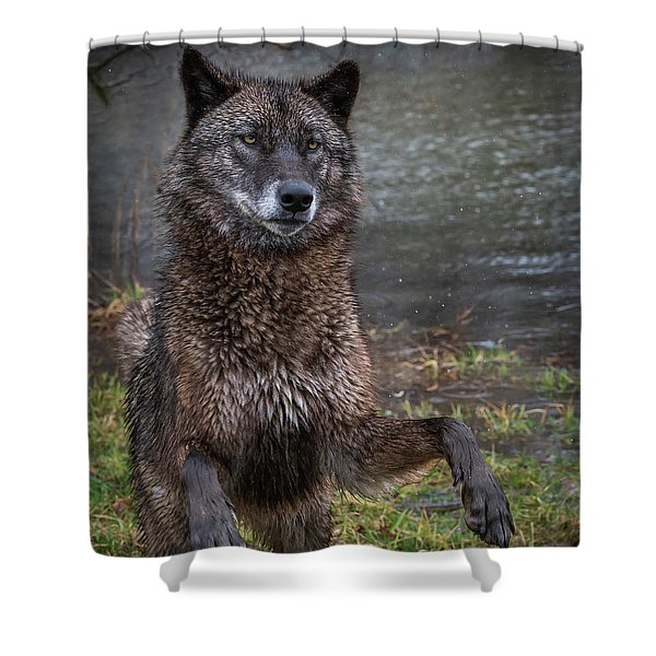Jumping Boy Shower Curtain