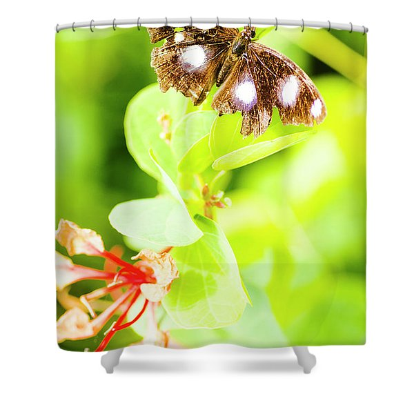 Jungle Bug Shower Curtain