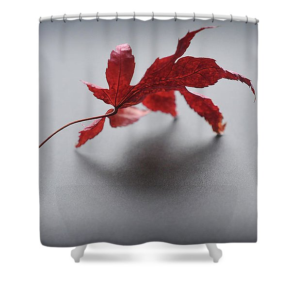 Shower Curtain featuring the photograph Just One by Michelle Wermuth