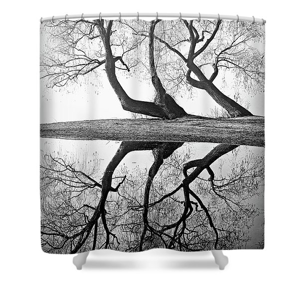 Kaloya Pond And Willow Trees Shower Curtain