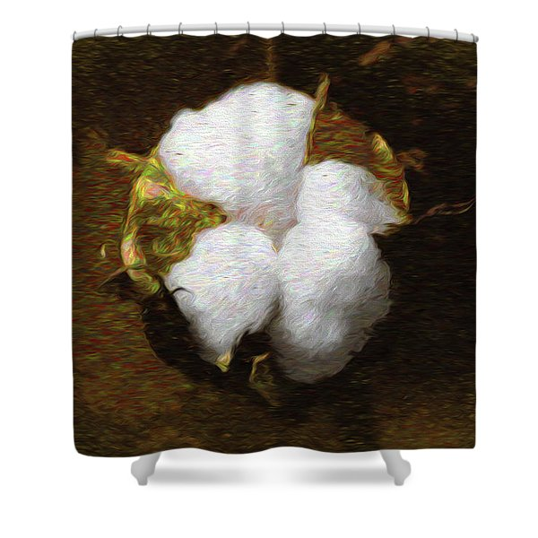 King Cotton Shower Curtain