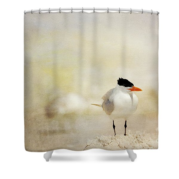 King Of The Sand Pile Shower Curtain