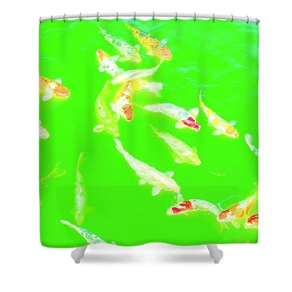 Koicarpscape 4 Shower Curtain