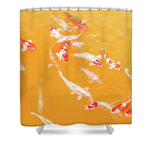 Koicarpscape 5 Shower Curtain