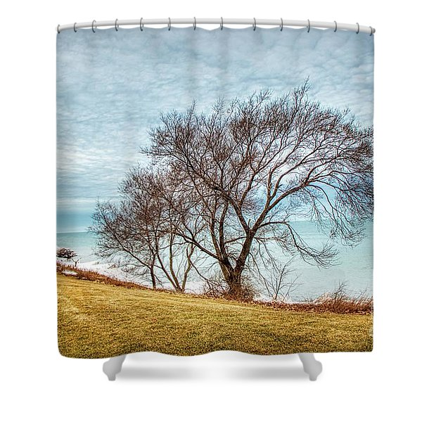 Lakeshore Lonely Tree Shower Curtain