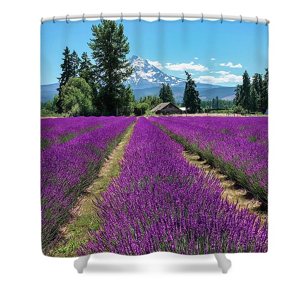 Shower Curtain featuring the photograph Lavender Valley Farm by Robert Bellomy