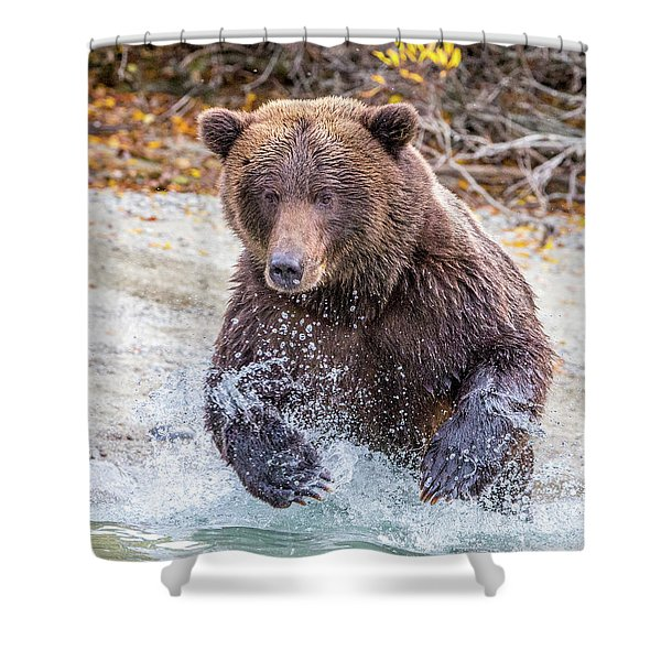 Lazy C 4 Shower Curtain