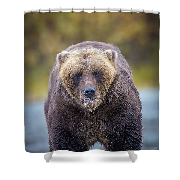 Lazy C Angry  Shower Curtain