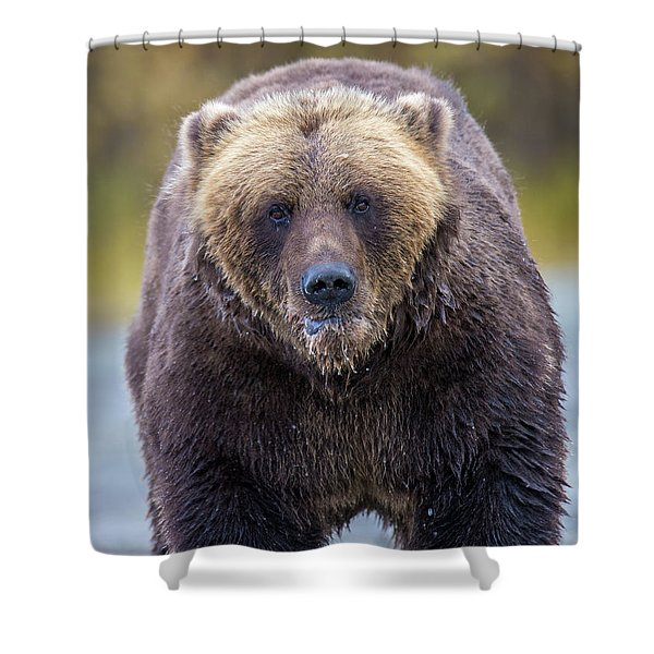Lazy C  Shower Curtain