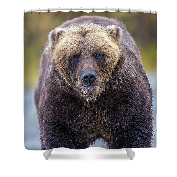 Lazy C  Shower Curtain