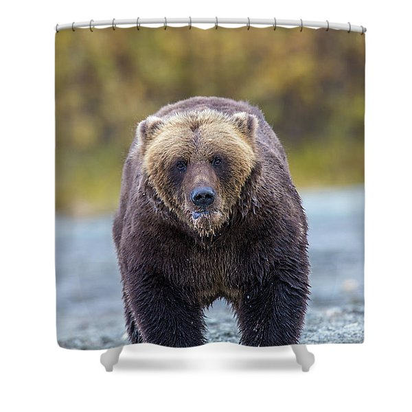 Lazy C T Shower Curtain