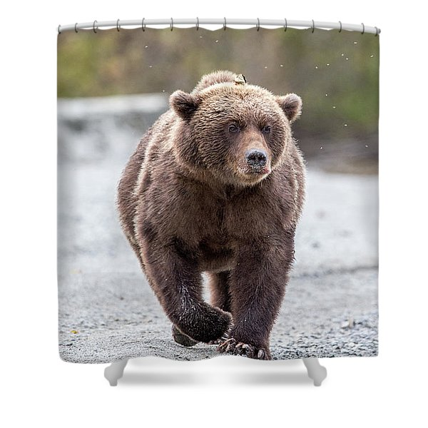 LC Shower Curtain