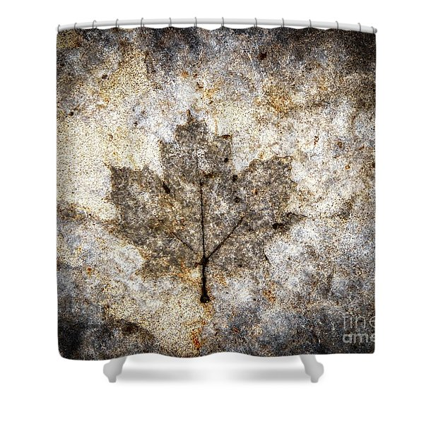 Leaf Imprint Shower Curtain