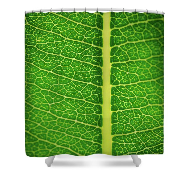 Leafy Detail Shower Curtain