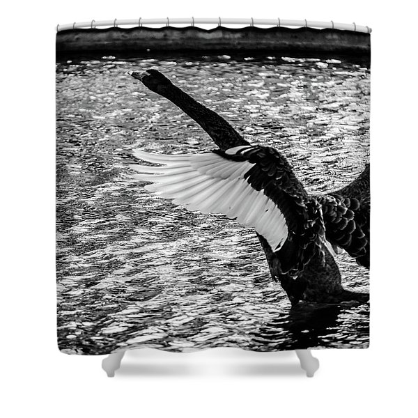 Learning To Fly Shower Curtain
