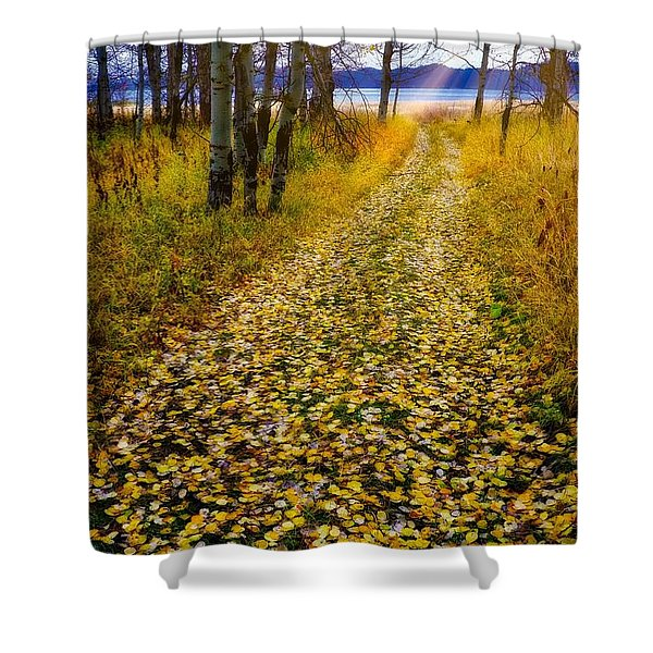 Shower Curtain featuring the photograph Leaves On Trail by Tom Gresham