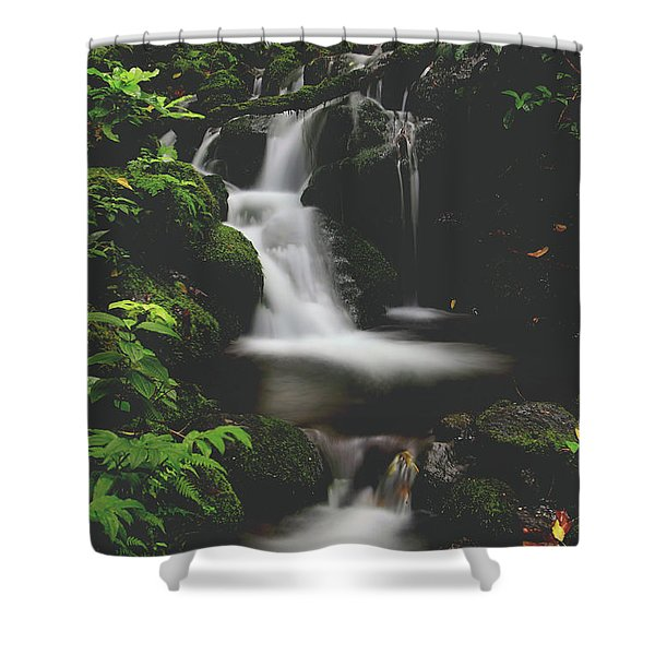 Let Your Heart Decide Shower Curtain