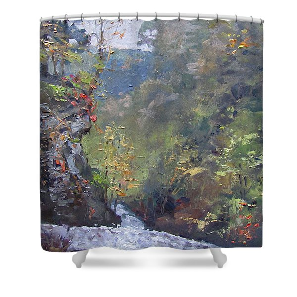 Letchworth State Park O/c Shower Curtain