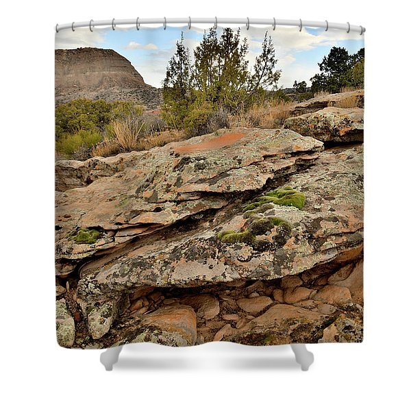 Lichen Covered Ledge In Colorado National Monument Shower Curtain
