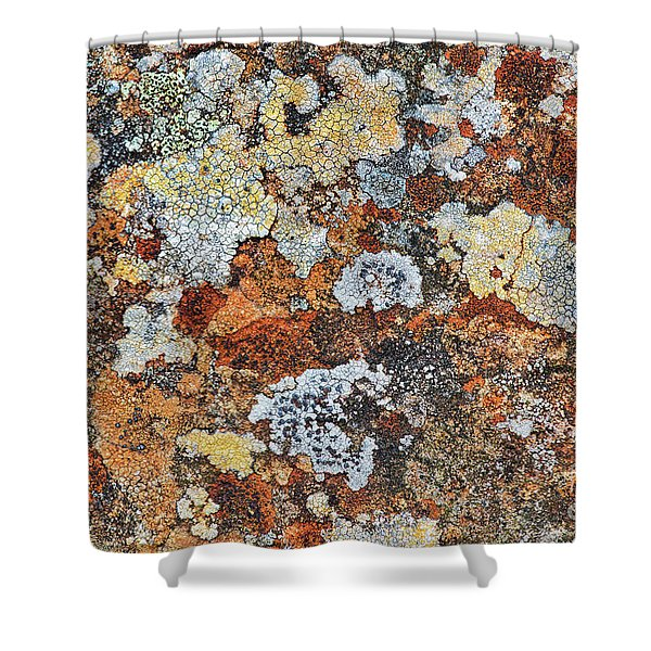 Lichen On Rock Shower Curtain