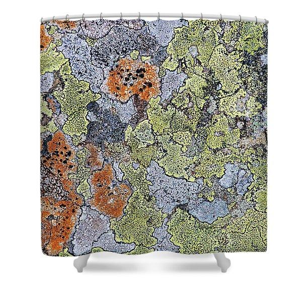 Lichen On Stone Shower Curtain