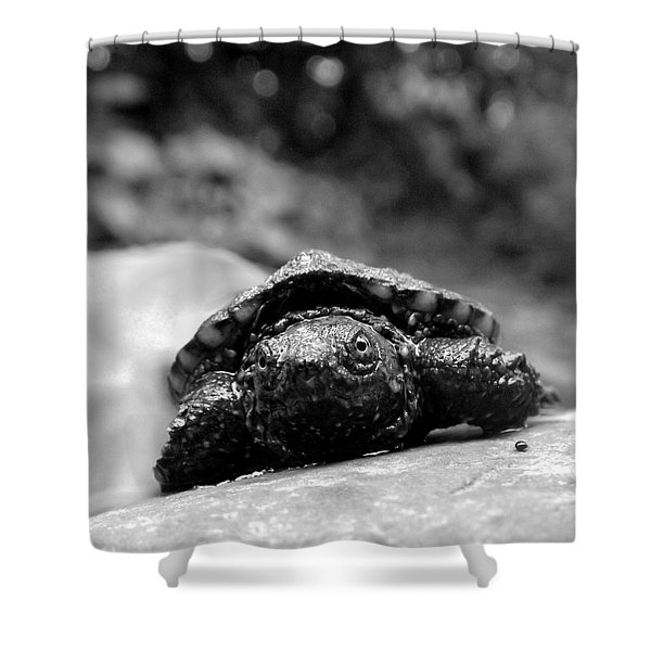 Lil Snapper Shower Curtain