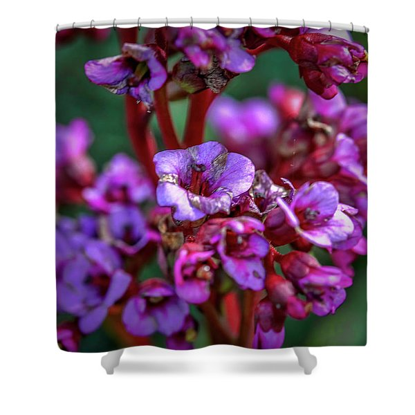 Lilac #h9 Shower Curtain