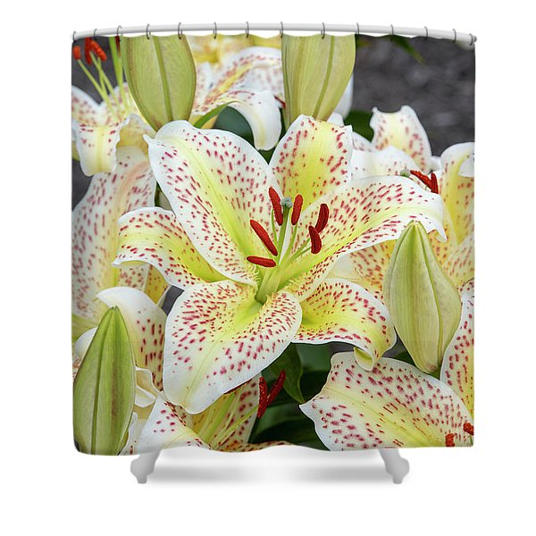 Lilium Tigermoon Shower Curtain