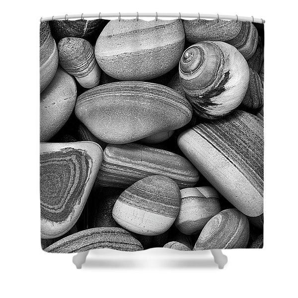 Lined Rocks And Shell Shower Curtain