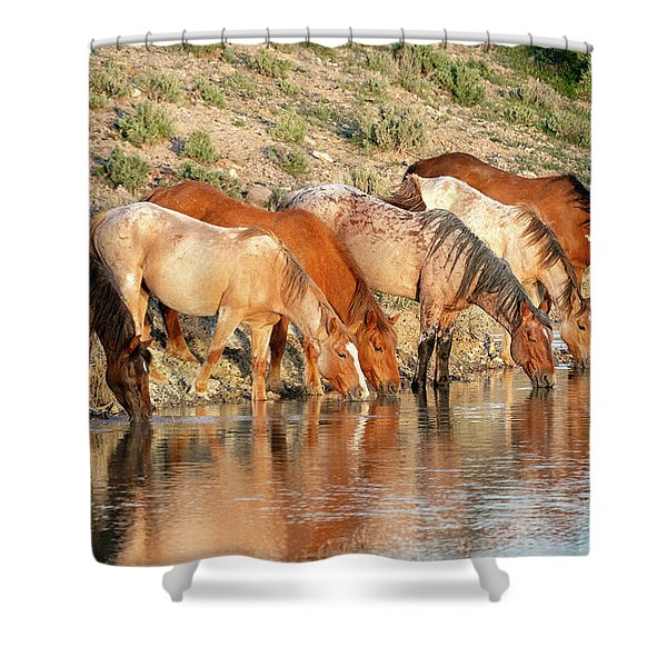 Lineup At The Pond-- Wild Horses Shower Curtain
