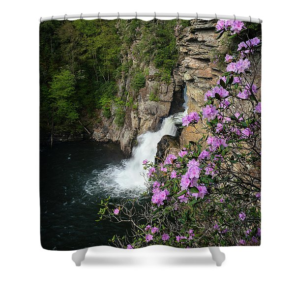Linville Falls Carolina Rhododendron Shower Curtain