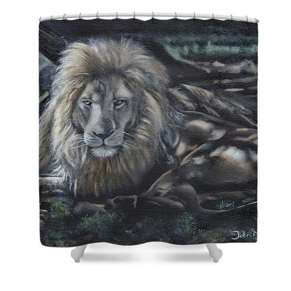 Lion In Dappled Shade Shower Curtain