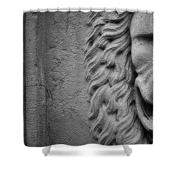 Lion Statue Portrait Shower Curtain