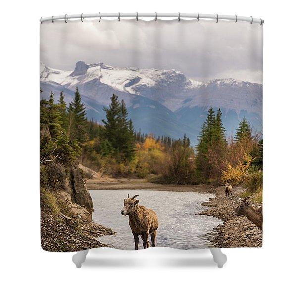 Little Bighorn Shower Curtain