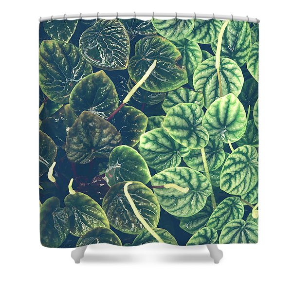 Little Green Leaves Shower Curtain