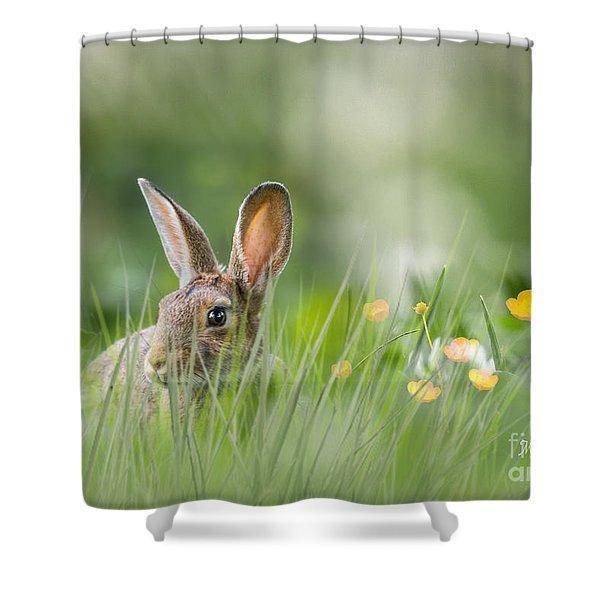 Little Hare Shower Curtain
