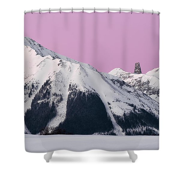 Lizard Head  Shower Curtain