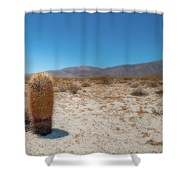 Lone Barrel Cactus Shower Curtain