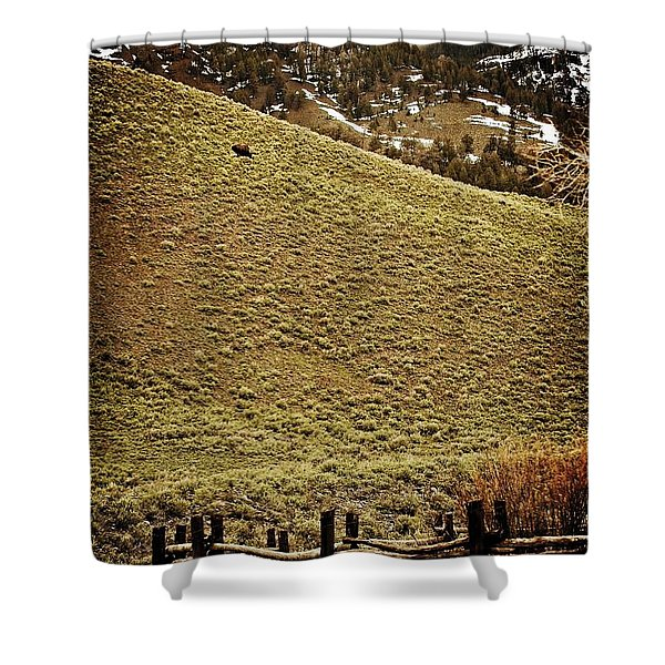 Lone Bison Shower Curtain