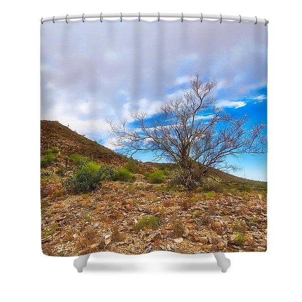 Lone Palo Verde Shower Curtain