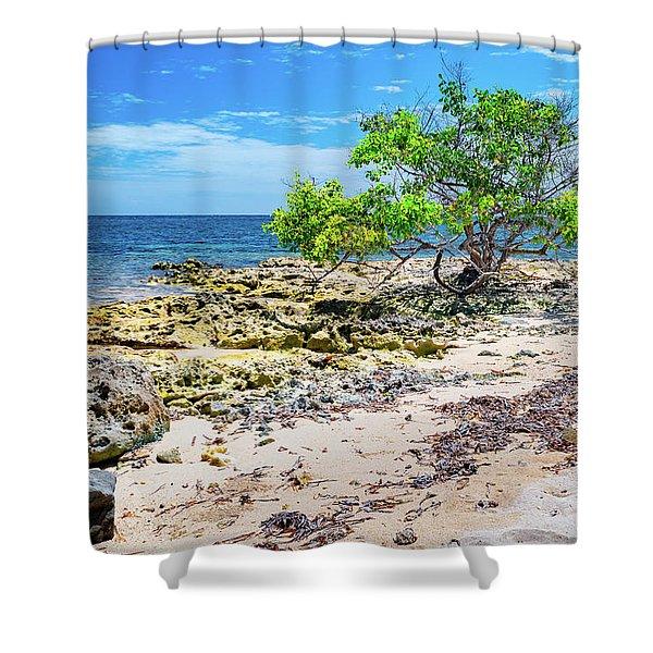 Lone Shore Tree Shower Curtain
