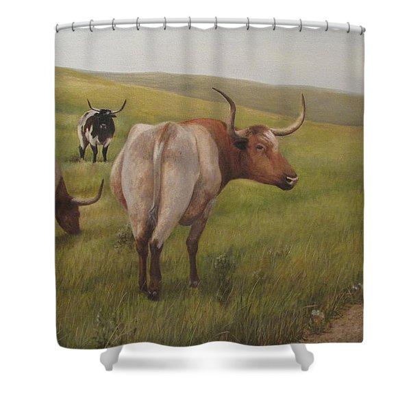 Long Horns Shower Curtain